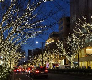 表参道のクリスマスイルミネーション